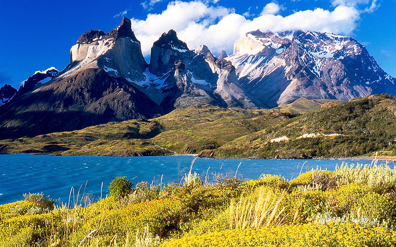 Why Am I Suddenly Considering Booking a Tour? torres del paine